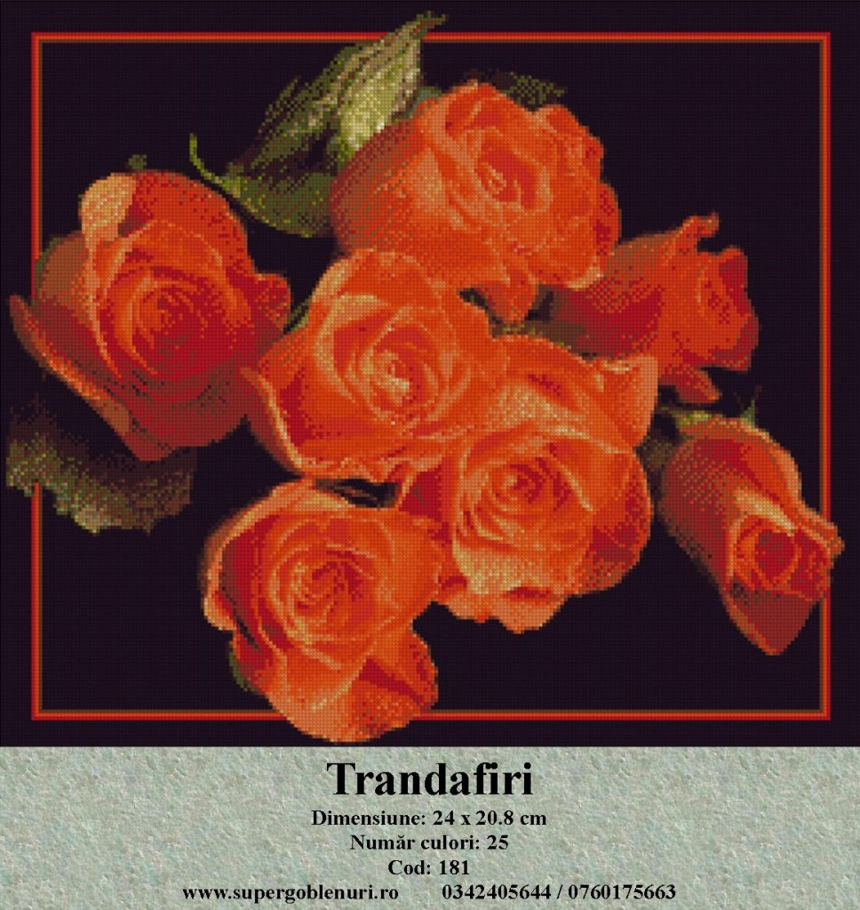 181 - Trandafiri